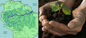 Terra Preta: Wisdom From Ancient Amazon